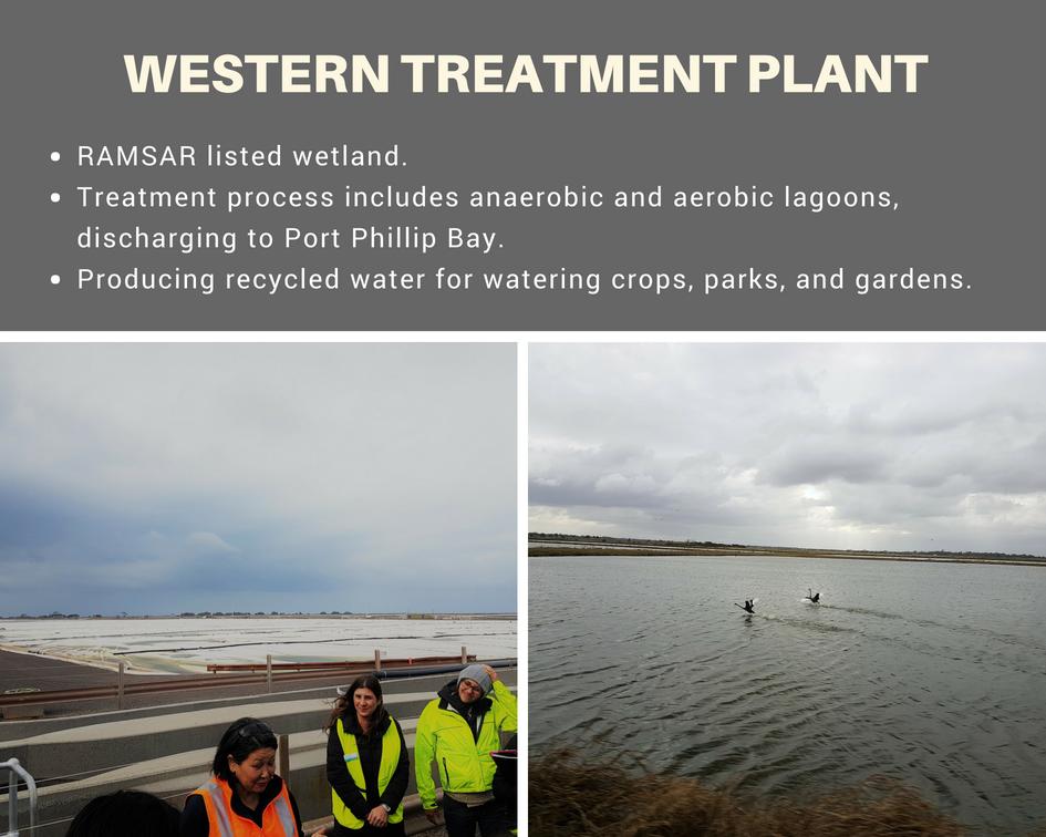 Western treatment plant